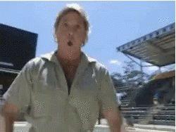 Happy birthday Steve Irwin what a fucking legend