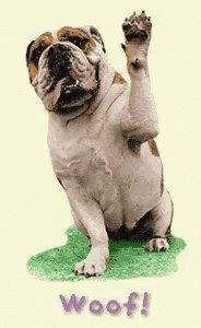 Wendy Schardein's photo on #dogshowschmovies