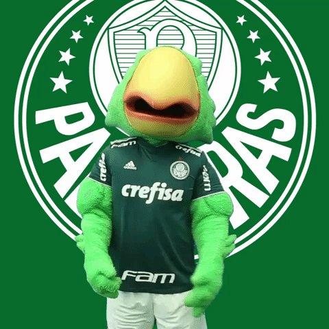 Palmeirense News 𝓟𝓝𝓮𝔀𝓼's photo on Palmeiras x Bragantino