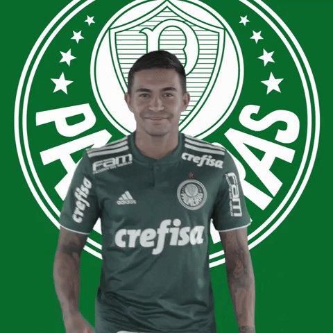 Edson 's photo on Palmeiras x Bragantino