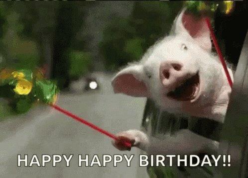 Happy Birthday from Louisiana!! Hope it s the best one yet!!