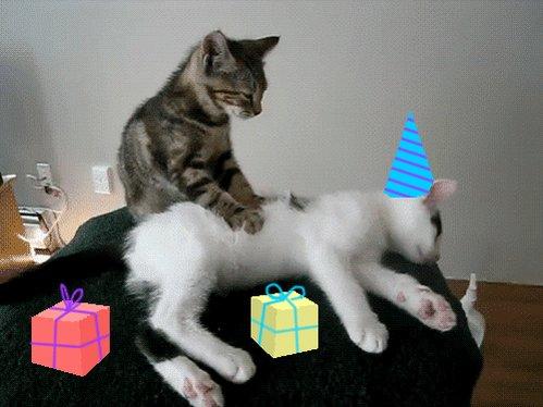 Happy bday!!