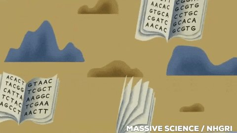 Book Of Life Books GIF by Massive Science