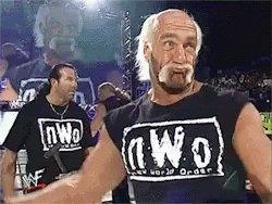 Nwo Hulk Hogan GIF