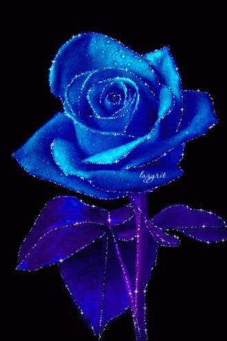 Blue Rose Flower GIF