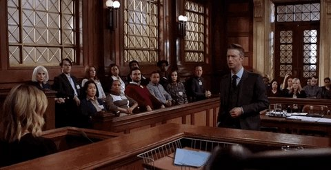 Law And Order Court GIF by Wolf Entertainment