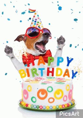A belated happy birthday Brady. 6 yrs old. Big boy!!