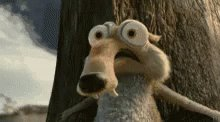 Ice Age Squirrel GIF