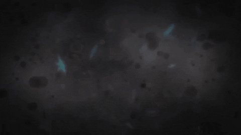 Space Webb GIF by NASA