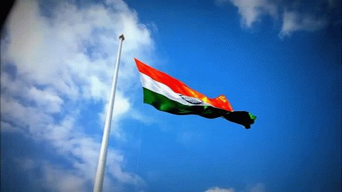 Indian Flag GIF