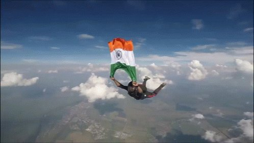 Indian Indian Flag GIF