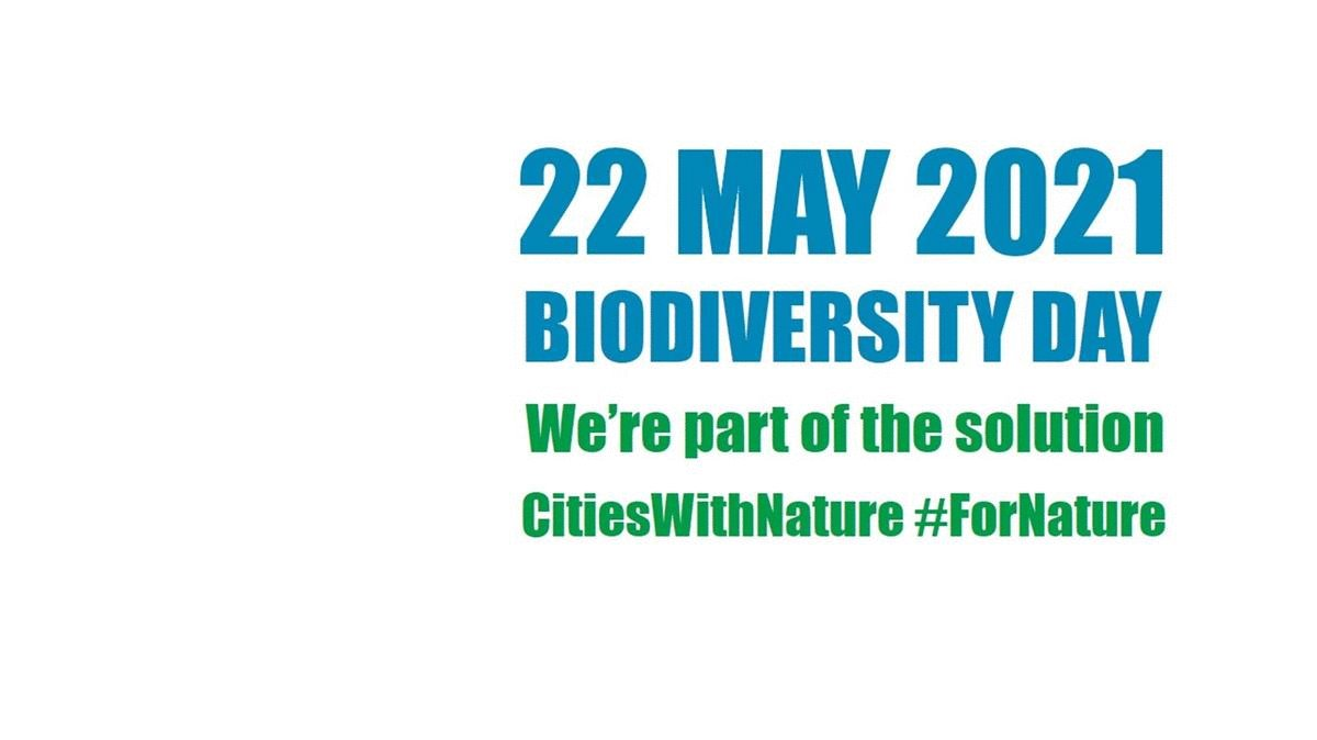 RT @CitiesWNature #BiodiversityDay is coming up on 22 May!  This year, we're building momentum towards @UNBiodiversity's #COP15, where the post-2020 global #biodiversity framework will be adopted!  Show your support #ForNature by customizing the logo: https://t.co/p1jEJj8MyH @EU_ENV @IPBES @ICLEI