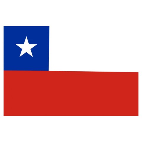 chile GIF by Latinoji