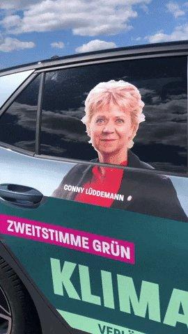 Landtagswahl GIF by Grüne S...