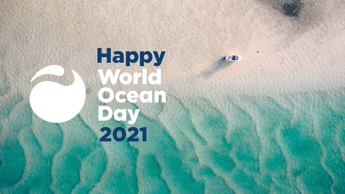 Celebrating World Ocean Day❓ Tell us about it❗️ 🌊#WorldOceanDay #WorldOceanDay2021