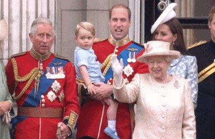 Queen Elizabeth Government GIF