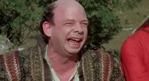 The Princess Bride Laughing GIF by filmeditor