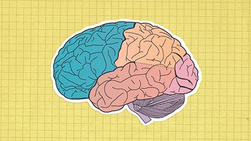 uc berkeley psychology GIF