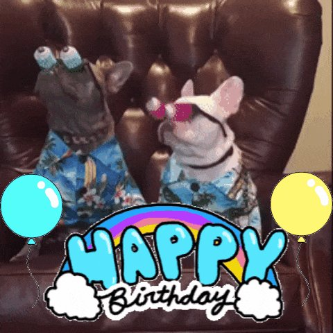 Happy Birthday to Cash-Have fun!