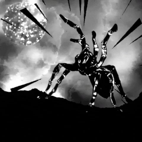 black and white spider GIF by James Guthman