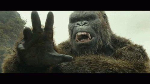 King Kong Mad GIF