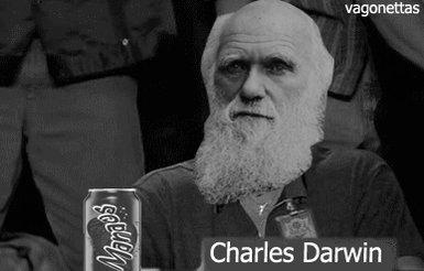 """Darwin fazendo um """"joinha"""" para a tela"""