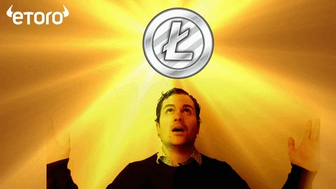 Litecoin Ltc GIF by eToro