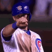 Cubs Two GIF