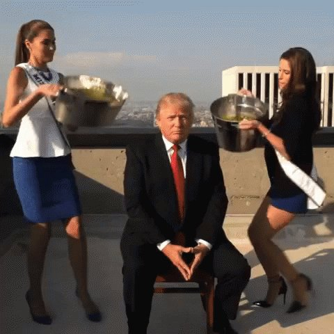 Golden Shower Trump GIF