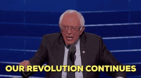 Bernie Sanders Revolution G...