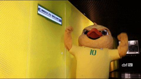selecao brasileira brazilian mascot GIF by Confederação Br