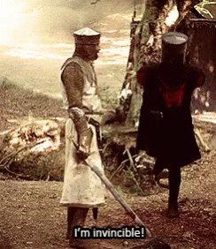 Monty Python Im Invincible GIF