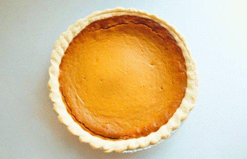 Pumpkin Pie Pie Day GIF