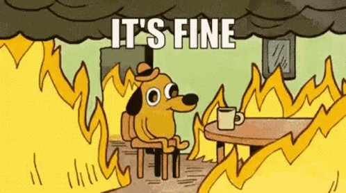 Its Fine Dog Fire GIF