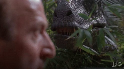 Clever Girl Hello GIF