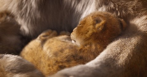 Just saw #TheLionKing and it was great. Story doesn't sway from original and characters are great.