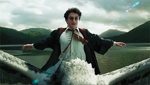 Happy Birthday Harry Potter!  May all your nerds assemble.