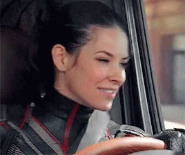 Happy birthday to our best wasp ever. Stan Evangeline Lilly.
