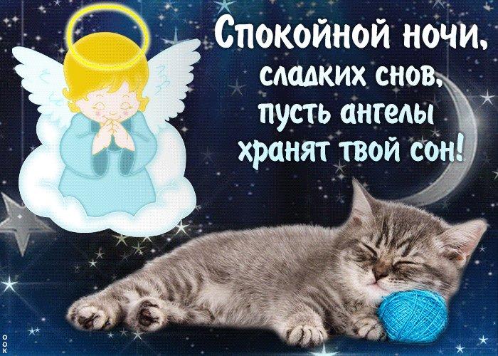 Открытки ангелочков с пожеланиями спокойной ночи для виртуальных друзей, тему