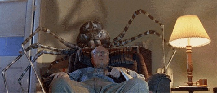 Страшная гифка с пауком