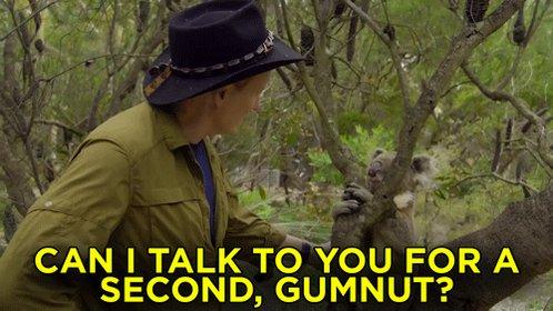 ICYMI: Conan held an intervention with a eucalyptus-addicted koala named Gumnut. http://conan25.teamcoco.com/node/107348 #ConanAustralia