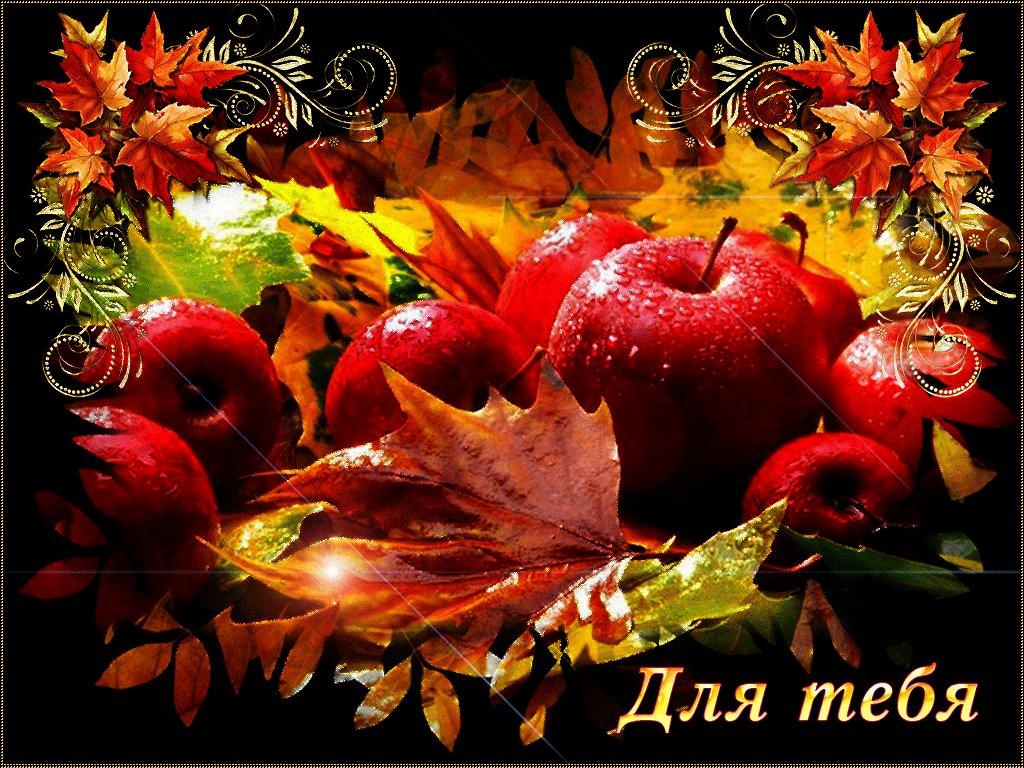 Осенние пейзажи казахстана фото