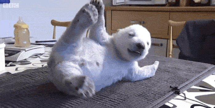 Смешной медвежонок гифки, открытки сюрпризом