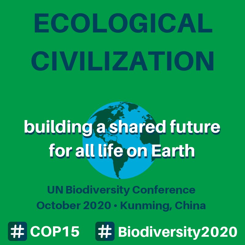 "RT @UNBiodiversity Drum roll, please! 🥁  The theme for COP 15 has been revealed.  Host #China lends its vision of ""Ecological Civilization"" to inspire ambition & action towards a new global framework for #biodiversity.  #COP15 will be held 19-31 October 2020 in #Kunming.  ➡️https://t.co/v9FmUm2xJW"