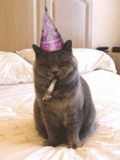 @MalmaisonHotels Happy Birthday! https://t.co/CQF5BugmSO