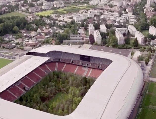 Une forêt de 300 arbres sur la pelouse d'un stade de #football pour sensibiliser à l'#environnement !  👉  #art #Switzerland