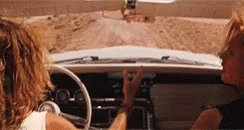 No offense, but if CB Bucknor and Angel Hernandez went and Thelma and Louise'd it up, I'd be okay with it.