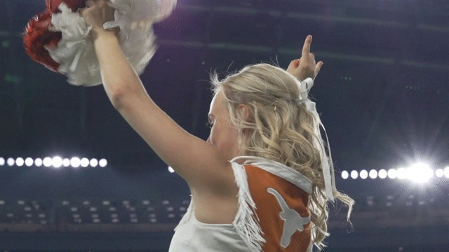 TexasLonghorns photo