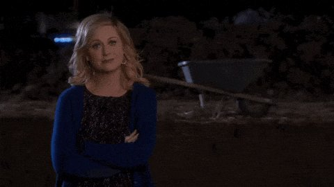 Happy bday to Amy Poehler. Leslie Knope is painfully and accurately me. And I love her big time thanks