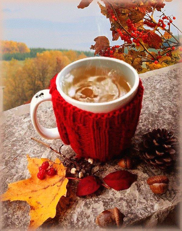 Осенние картинки с добрым утром с милыми лесными нимфами